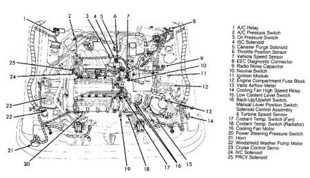 Bestseller: Zx2 Manual Or Standard Transmission Diagram
