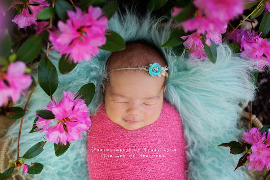 {Eleanor} Pretty in Pink & Purple Newborn Photography Ann Arbor