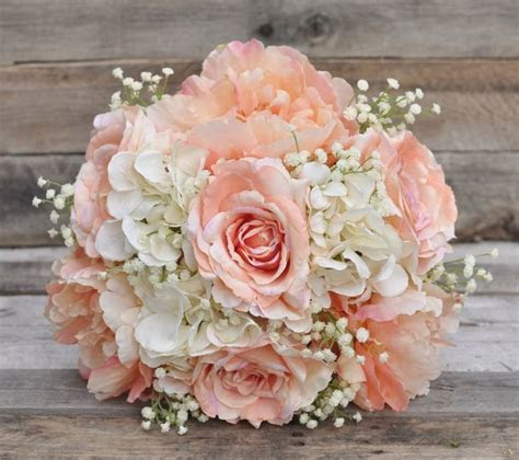 25  Best Ideas about Peach Rose on Pinterest   Roses