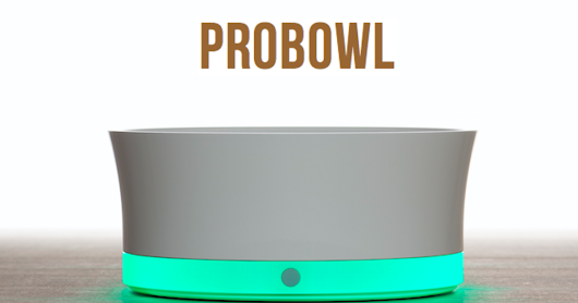 CLICK HERE to support ProBowl the first smart dog bowl