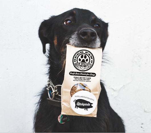 Win a Year's Supply of Dog Treats from Beer Paws!