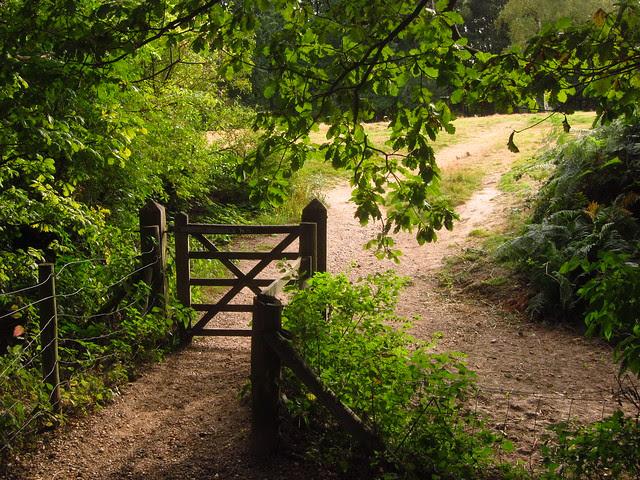 West Meadow Gate
