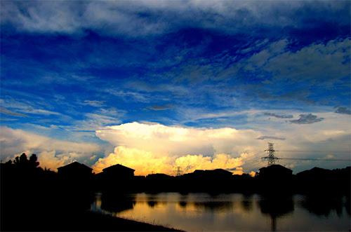 Blooming Sky 101609