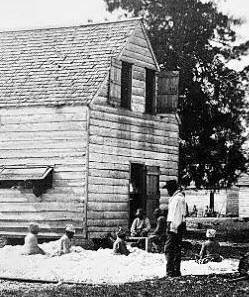 Slaves Working Cotton