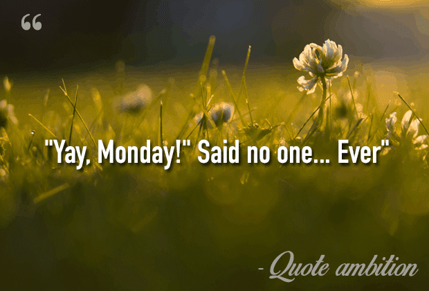 85 Inspirational Funny Monday Quotes Top List