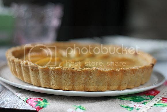 apple custard 2