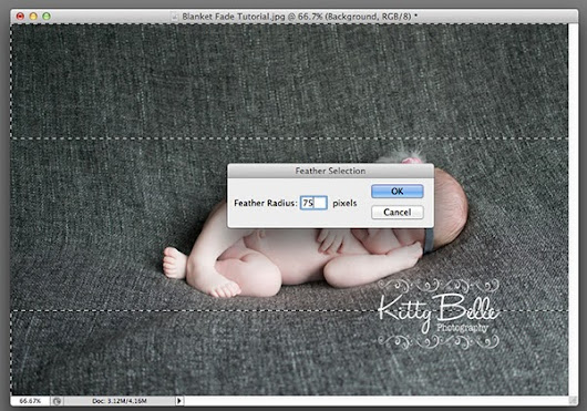 写真を柔らかな雰囲気を付与するPhotoshopアクション「CofeeShop Auto Baby Blanket Blur Photoshop/PSE Action!」
