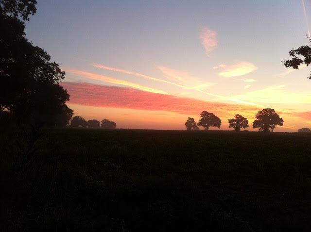 sunrise 28.9 (2)