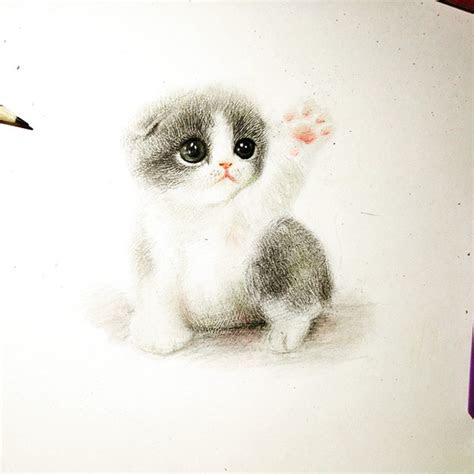 draw furry adorable animals  cure unhappiness bored