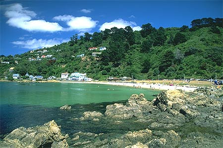 Scorching Bay Seatoun Photo