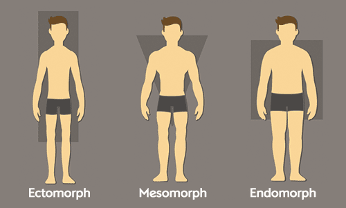 Ecommerce ectomorph body bodycon endomorph on different dress types mesomorph dubai missguided