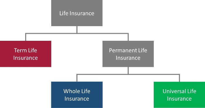 Term Life Insurance vs Whole and Universal Life Insurance ...