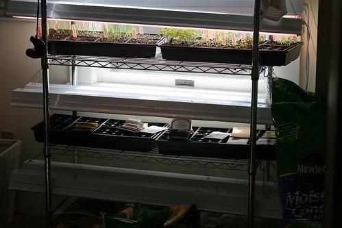 seedling shelves 142