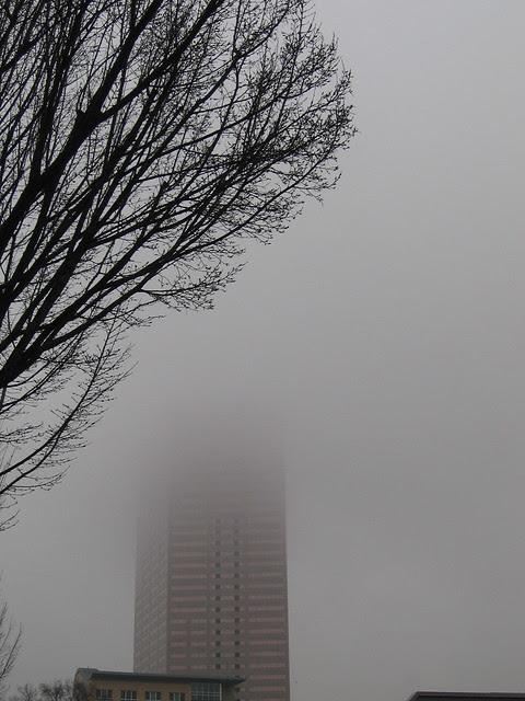 fog_usbb