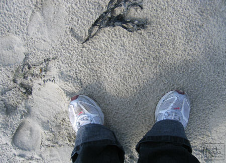 shoes & sand :: sjø & strand