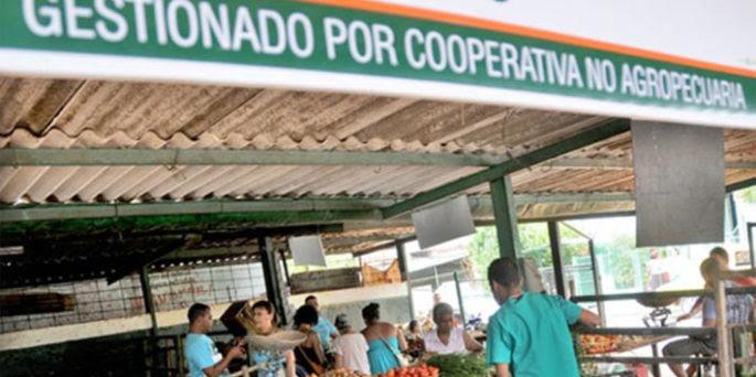 Cuentapropismo y cooperativismo: otra decepción