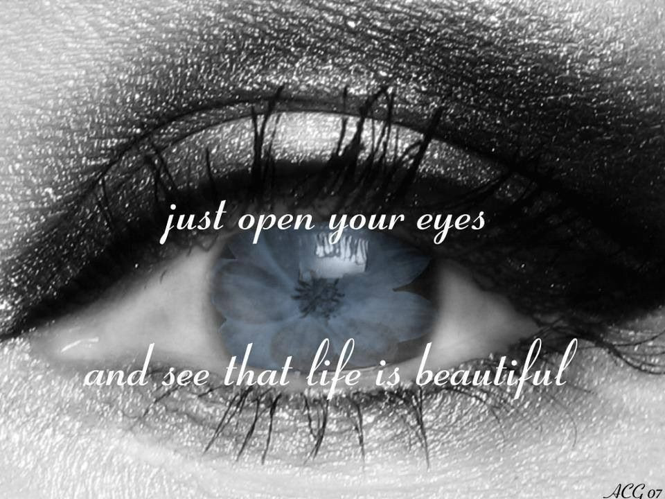 Brown Eyed Quotes For Facebook Quotesgram 40 Quotes