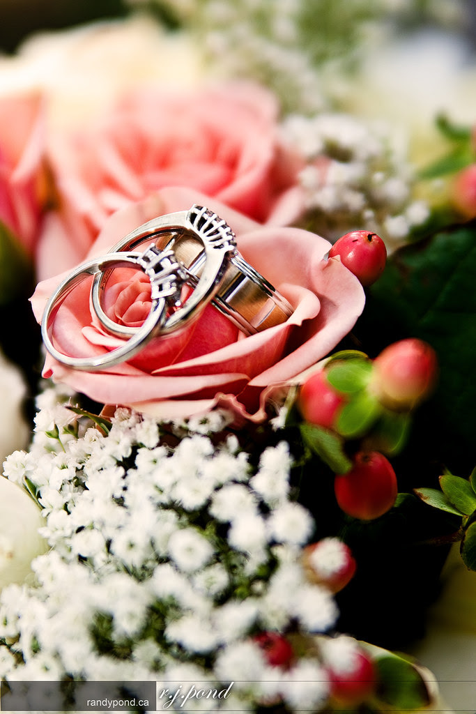 ~ Flowers and Rings ~