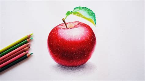 draw  apple step  step tutorial prismacolor