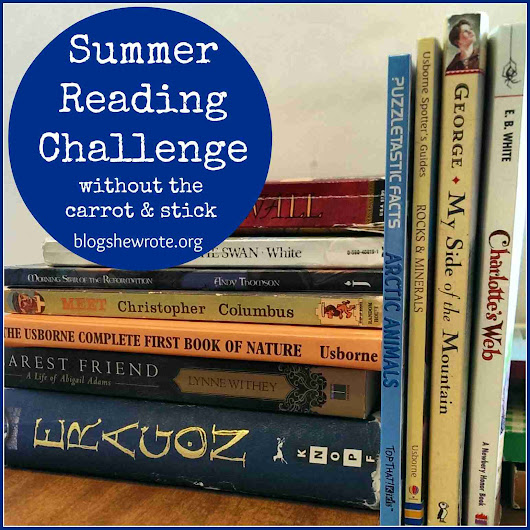 Summer Reading Challenge without The Carrot & Stick - Blog, She Wrote