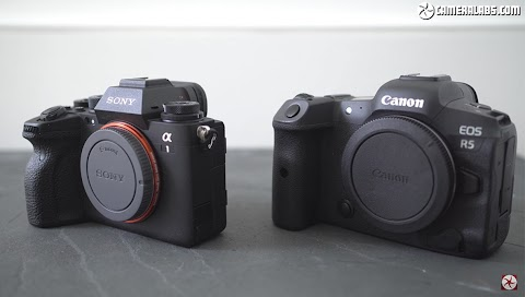 Comparing the Video Quality Between the Canon EOS R5 and Sony a1