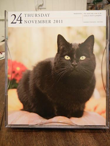 Cat Calendar _ 8130