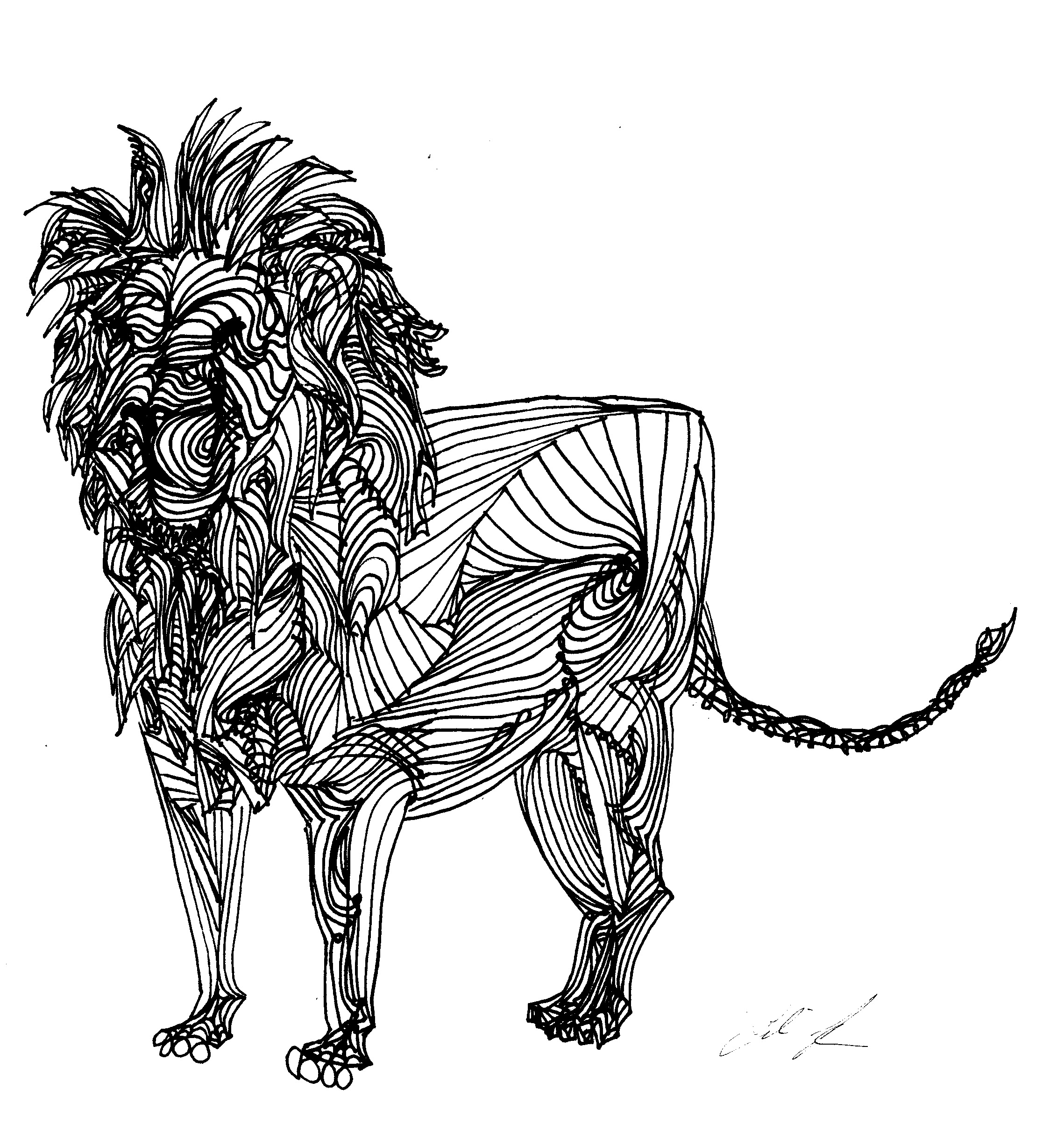 Free Line Drawing Download Free Clip Art Free Clip Art On