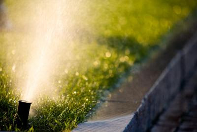 Should We Water a Lawn When the Temperature Is Cold? | Home Guides | SF Gate