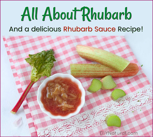 Rhubarb Sauce: All About Rhubarb And An Easy Rhubarb Sauce Recipe