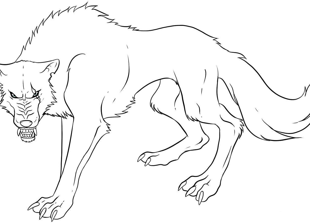 Realistic Wolf Drawing Step By Step at GetDrawings   Free ...