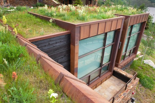 Green Roofs: A Fresh Take on a Centuries Old Concept