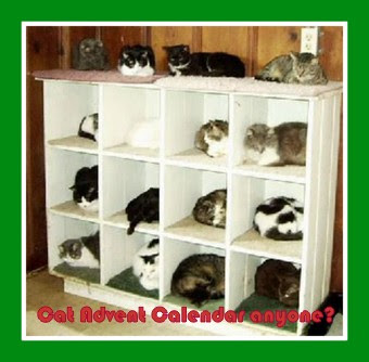 advent_cats