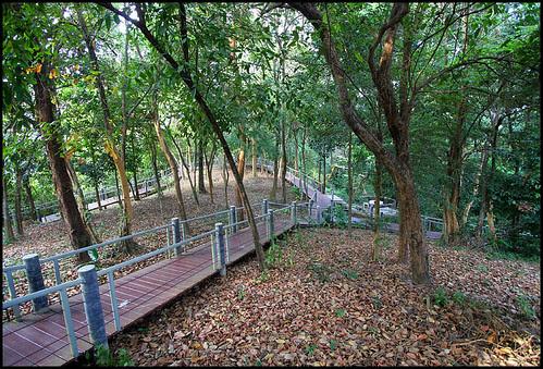 Path up to Khao Kad