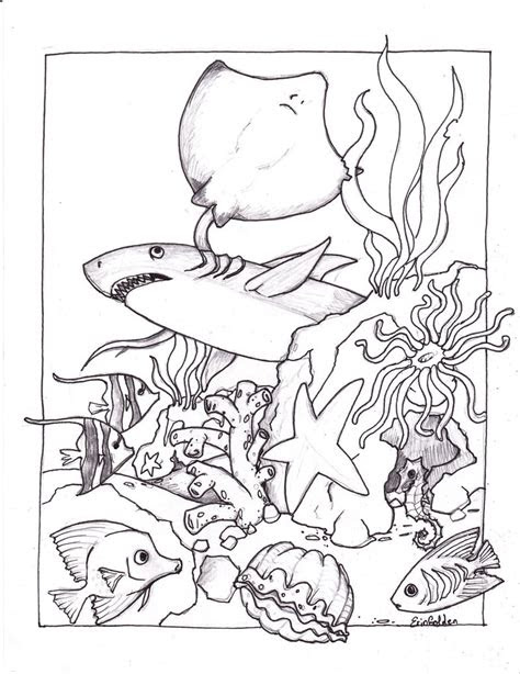 ocean life coloring pages    print
