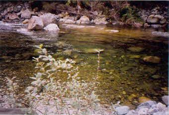 http://www.w-fabisch.com/heber-river.html
