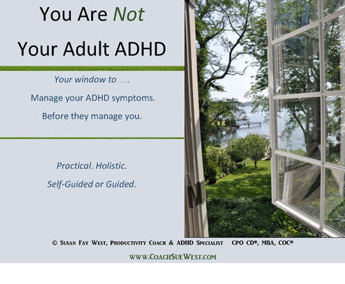 New Workbook: ADHD or Attention Struggles?