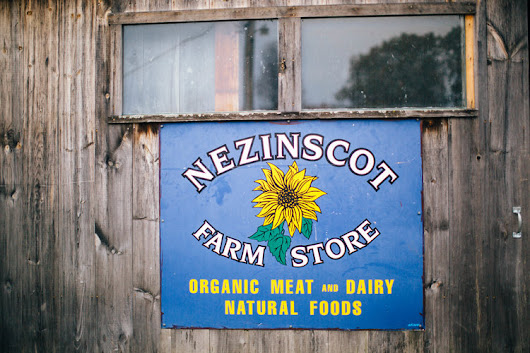 My Day Off: A Day with FarmHer - Nezinscot Farm