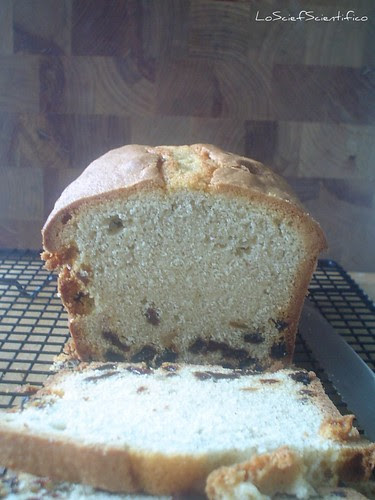 Gluten free Cinnamon&Raisin Plum Cake