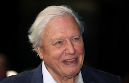 David Attenborough thinks the oceans are under the greatest threat in human history