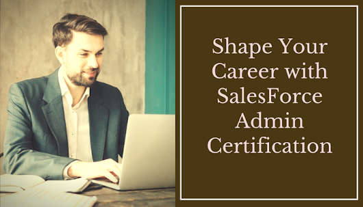 Can I prepare for salesforce certification (Admin - 201) by myself?