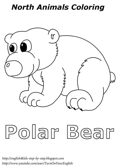 images  polar animal worksheets arctic animals