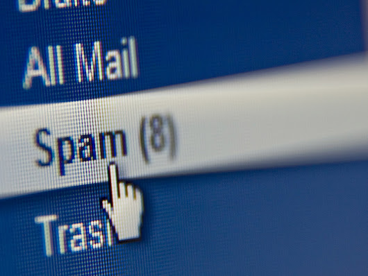 Check your email spam folder | Twisted Toast Digital