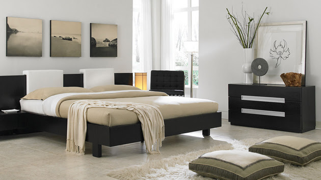 Apartment Decorating Ideas For Young Adults