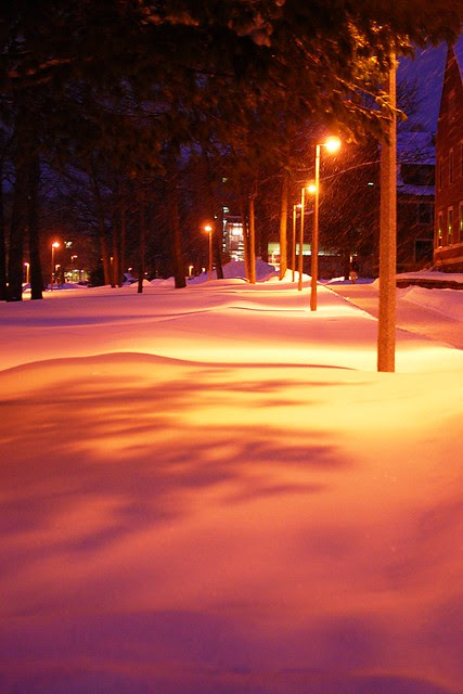 Warm colors on snow.