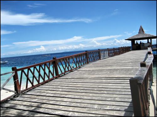 platform bridge