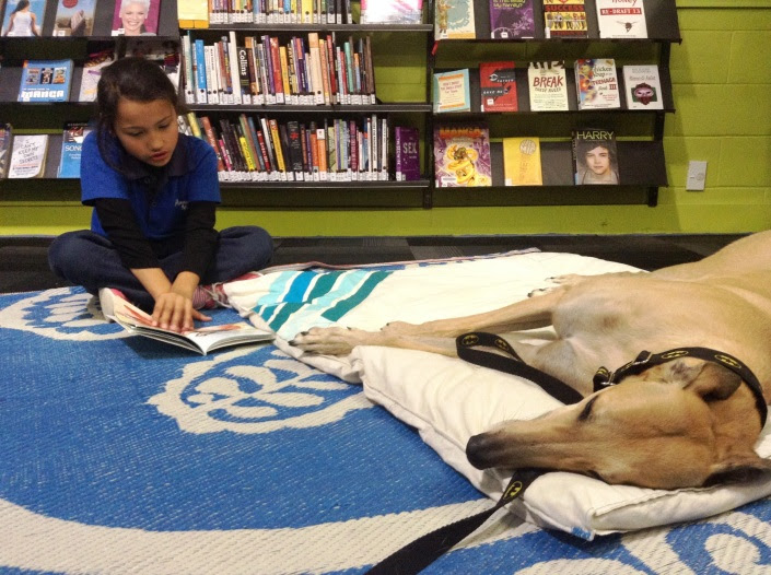 A child reads to a dog.