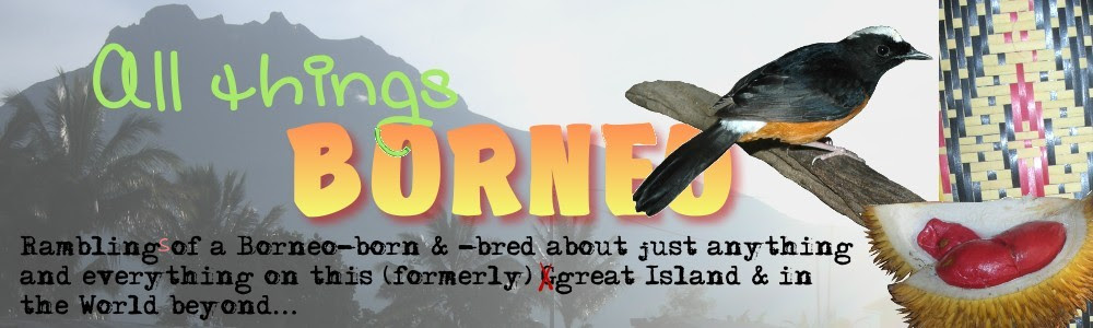 All Things Borneo