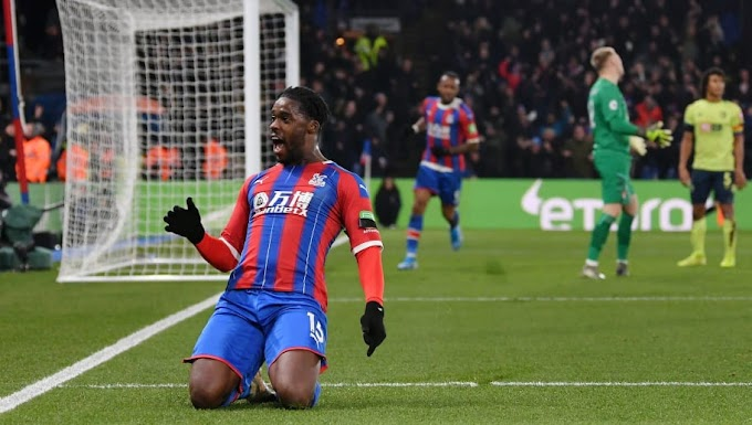 VIDEO: Crystal Palace 1:0  Bournemouth / Premier league