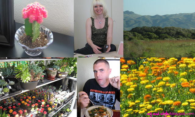 May 1st Collage