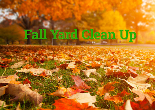 Fall Yard Clean Up Time in Pinellas County